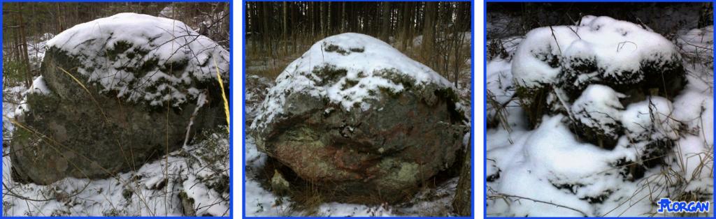 Sarjakuva20141229